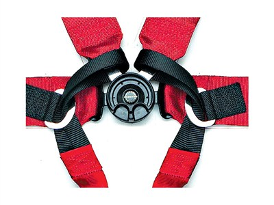 6-Point Harnesses
