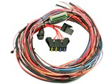 "AEM 30-2905-96 EMS-4 96"" Wiring Harness with Fuse & Relay Panel For EMS /"