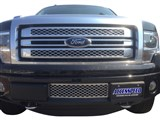 Accesspeed 2011 2012 2013 2014 Ford F-150 Ecoboost Grille - Lower Chrome Platinum Style /