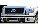 Carriage Works 39125 Mesh 1-Piece Lower Bumper Grille Insert 2009-2012 Ford F-150 /