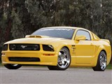 Xenon 12300 2005-2009 Mustang, GT V-8 & V-6 Body Kit /