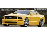 Xenon 12310 2005-2009 Mustang, GT V-8 & V-6 Body Kit /